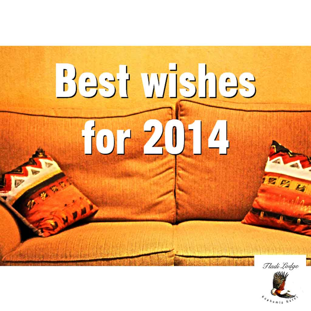 best-wishes-for-2014-from-tladi-lodge