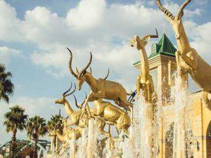 Gold-Reef-City-Boks-_-by-saaleha