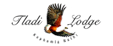 tladi-lodge-logo-and-slogan-kumphula-nathi-translated-as-with-us-you-will-rest